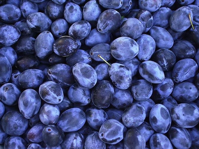 Serbian Prunes